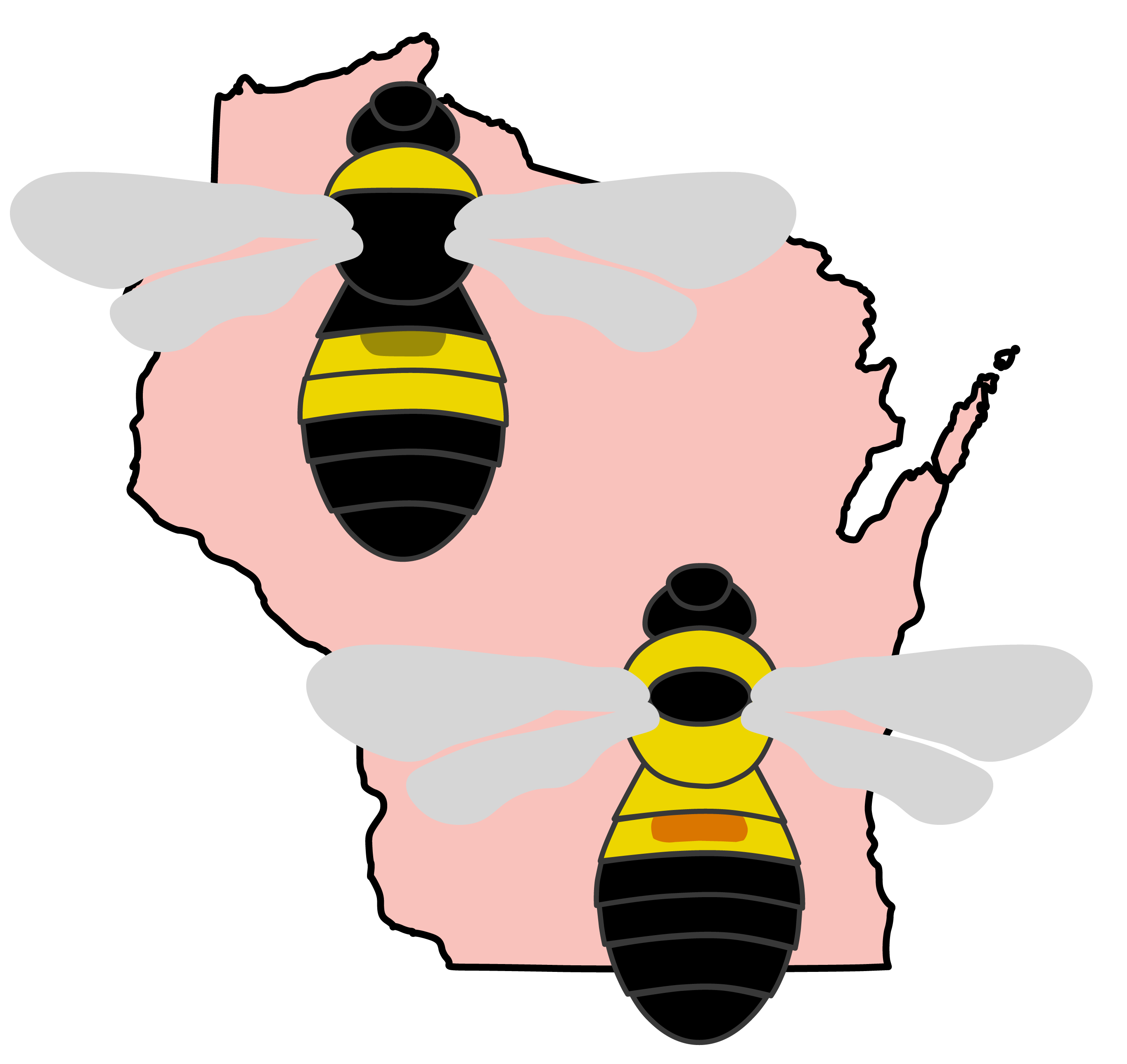 Illustrations of two now rare species of bumble bee, the tri-colored and rusty patched bumble bee