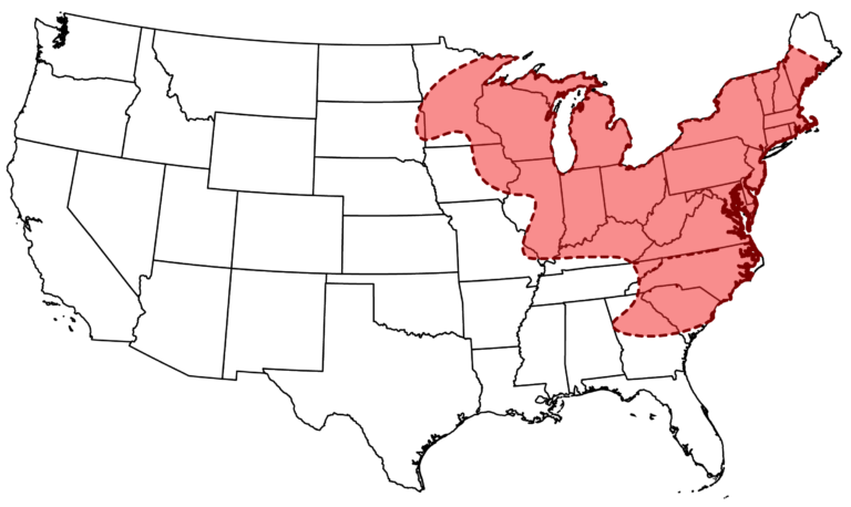 Historic range of rusty-patched bumble bee